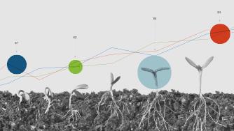 Fertilizer use efficiency