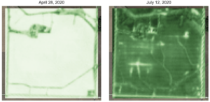 Figure 2 EVI images taken by the Sentinel satellites of a parcel of land in Illinois