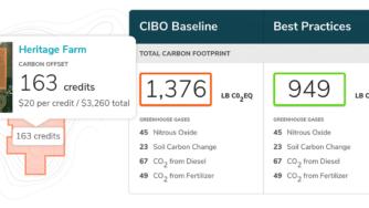 CIBO Impact