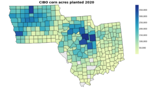 Figure 1 CIBO estimated corn acreage for the year 2020