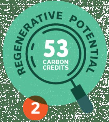 #2: Regenerative Potential - 53 carbon credits