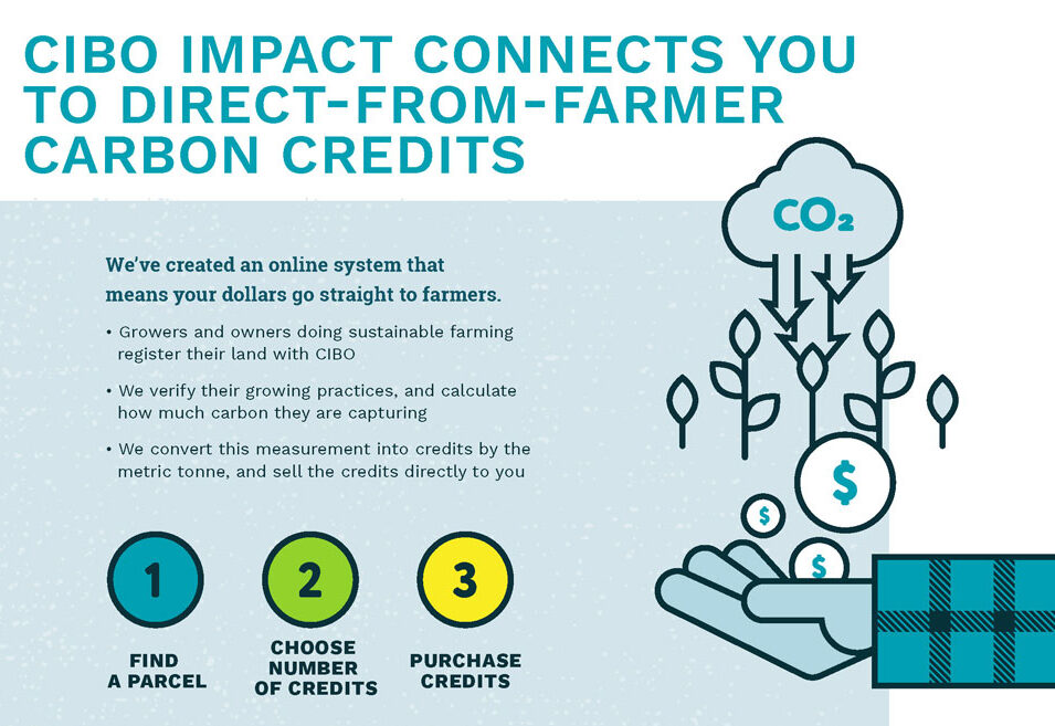 CIBO Impact connects you to direct-from-farmer carbon credits