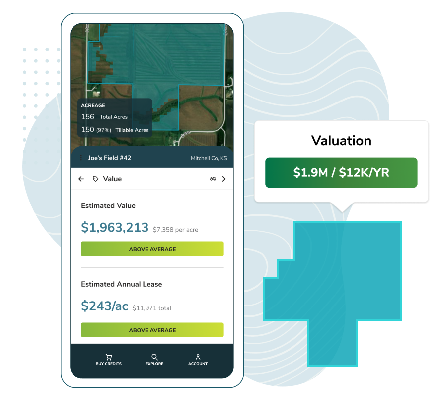 Insights Valuation