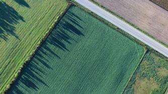 farmland scaled 1