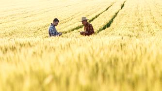 Blog CardImg farmer field